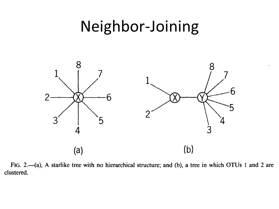 Neighbor-Joining