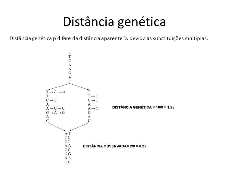 Distância genética Distância genética p difere da distância aparente D, devido às substituições múltiplas.