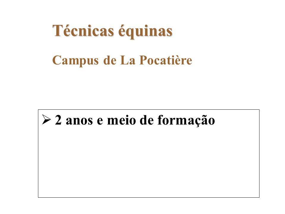 Campus de La Pocatière Técnicas équinas 2 anos e meio de formação