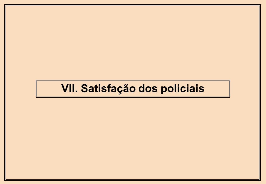 VII. Satisfação dos policiais
