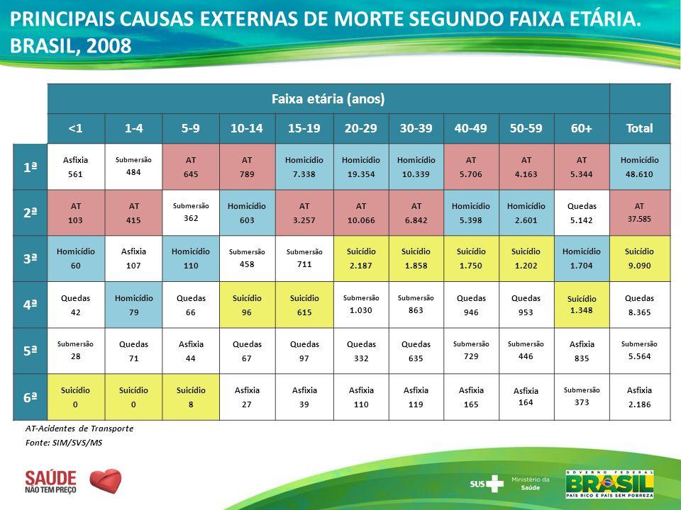 PRINCIPAIS CAUSAS EXTERNAS DE MORTE SEGUNDO FAIXA ETÁRIA. BRASIL, 2008