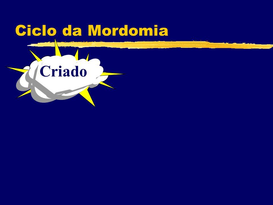 Ciclo da Mordomia Criado