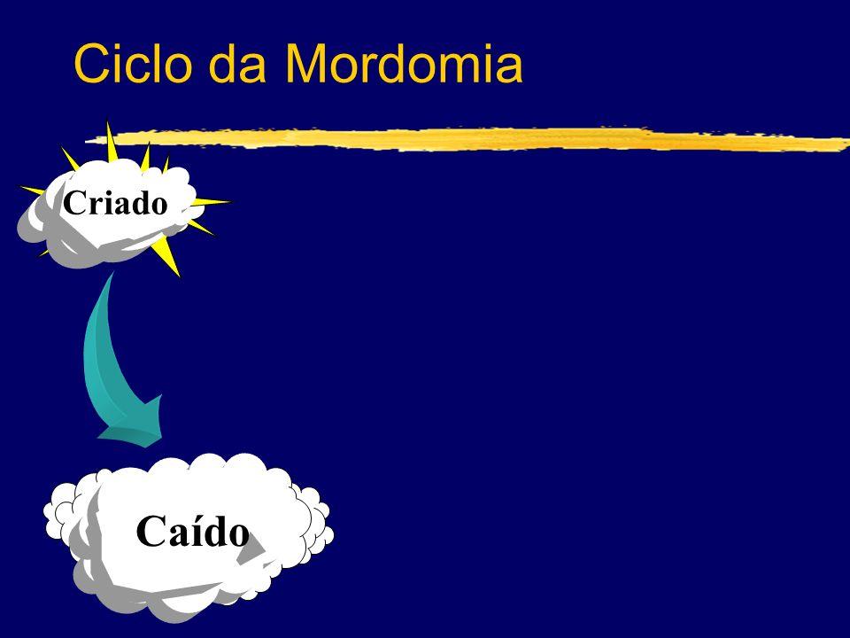 Ciclo da Mordomia Criado Caído