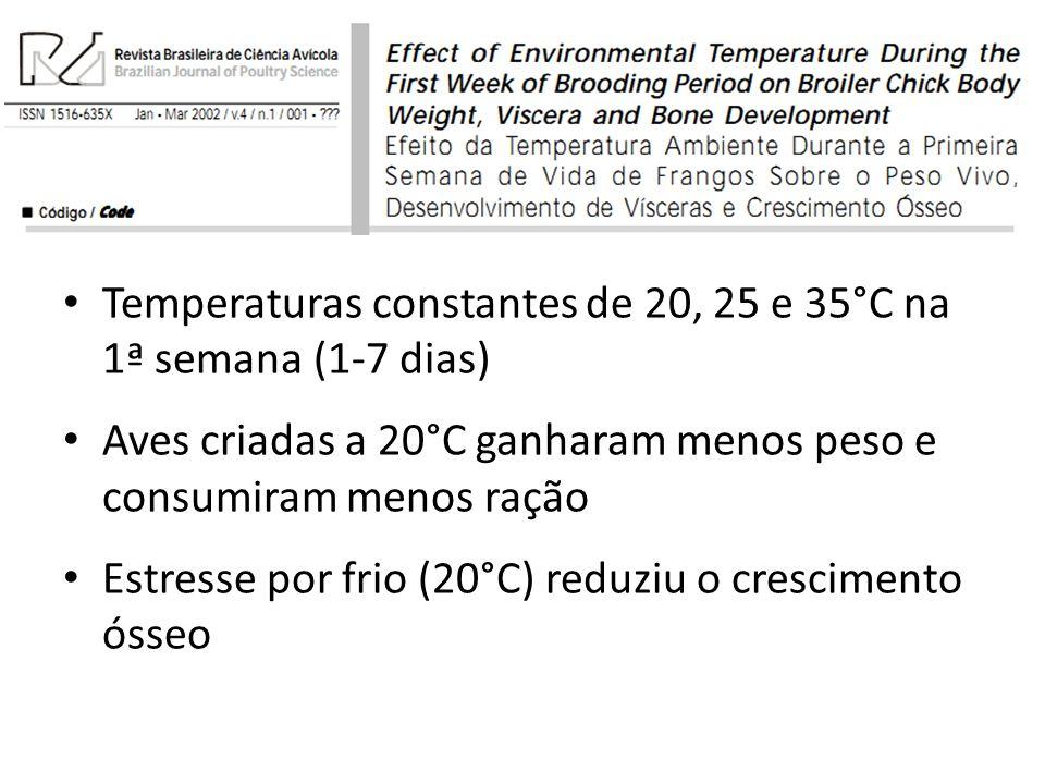Temperaturas constantes de 20, 25 e 35°C na 1ª semana (1-7 dias)
