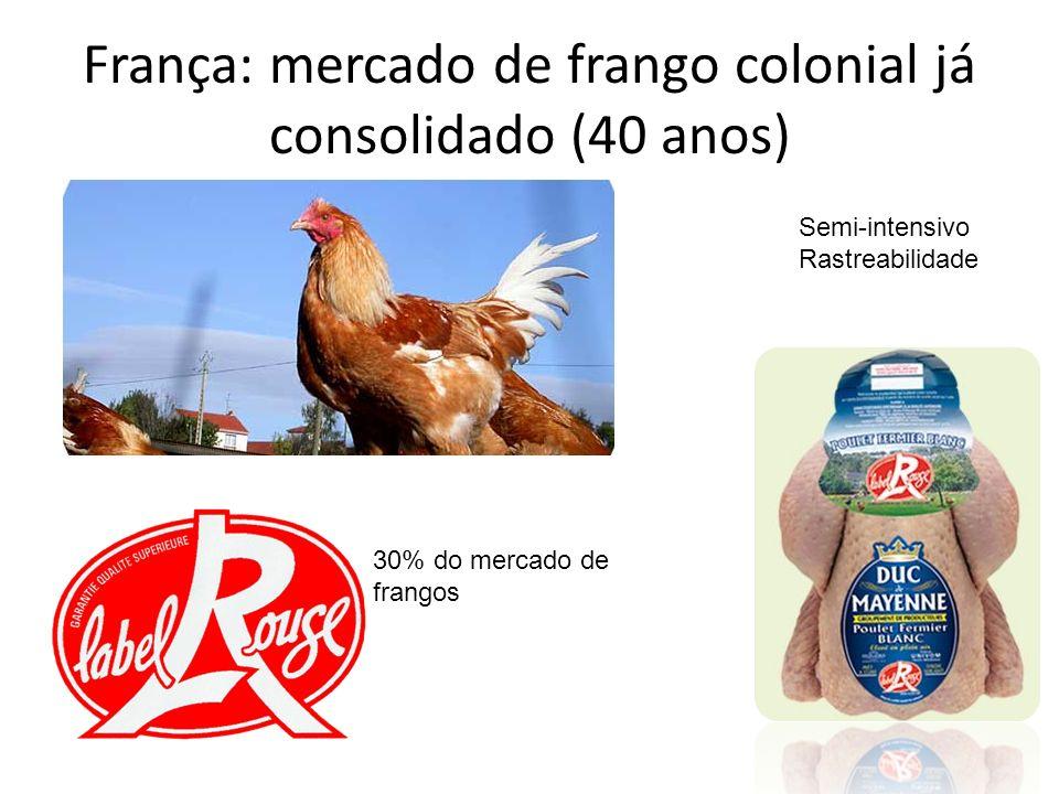 França: mercado de frango colonial já consolidado (40 anos)