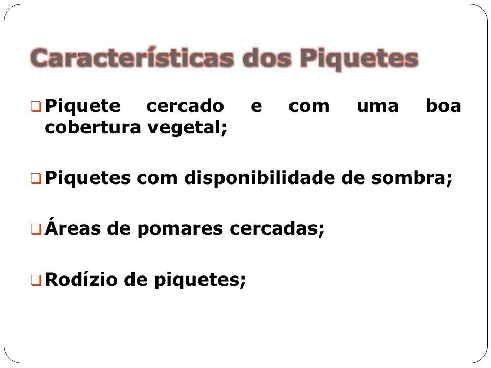 Características dos Piquetes