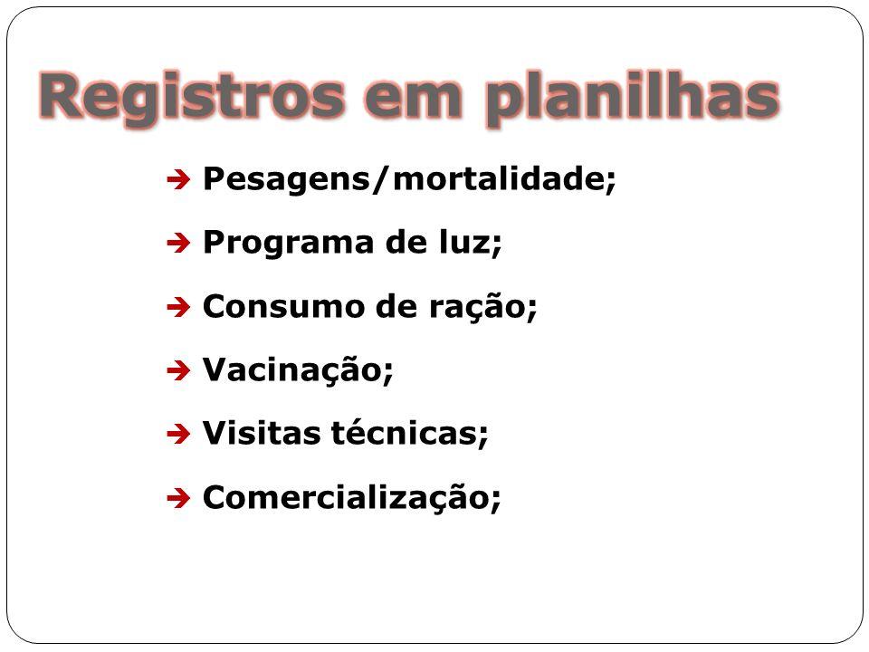 Registros em planilhas