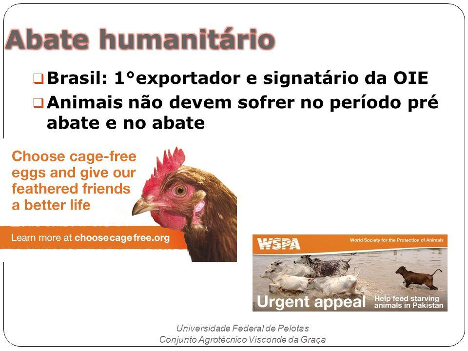Abate humanitário Brasil: 1°exportador e signatário da OIE