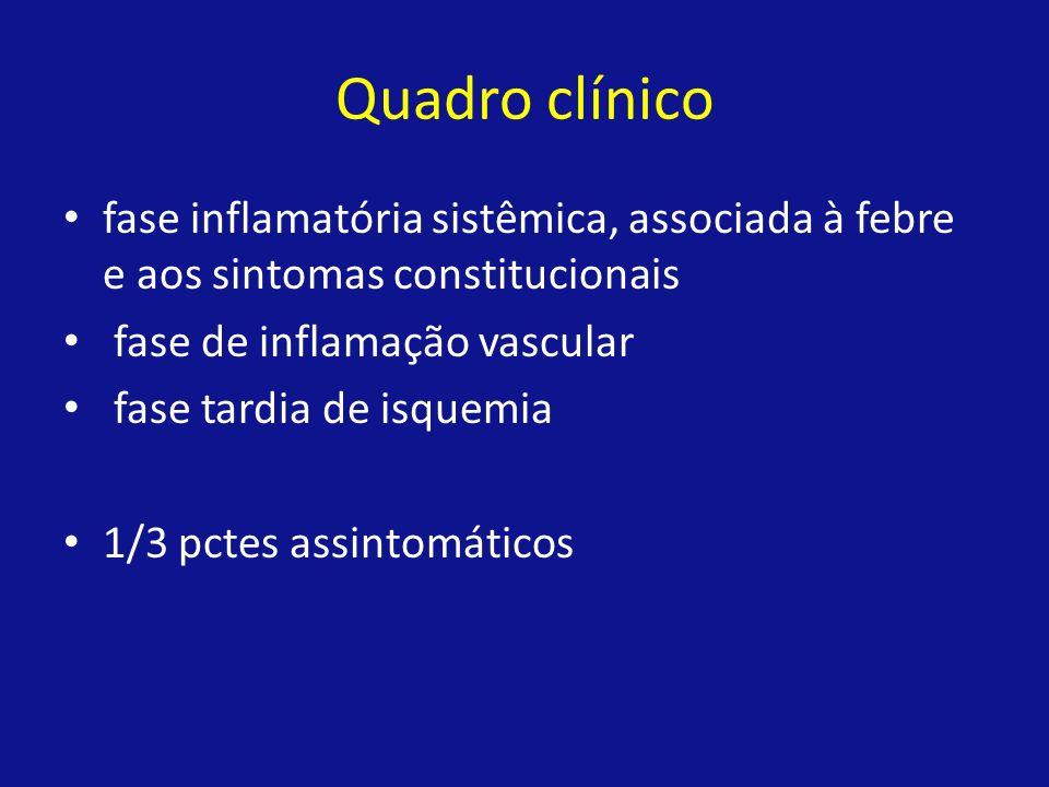 Quadro clínico fase inflamatória sistêmica, associada à febre e aos sintomas constitucionais. fase de inflamação vascular.