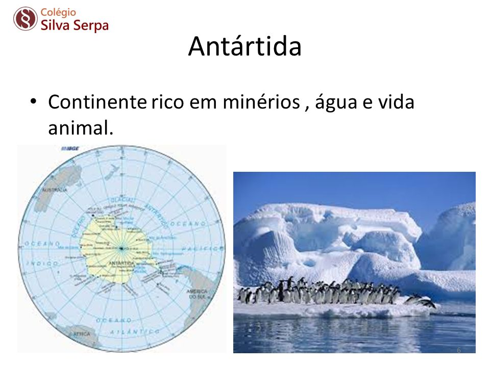 Antártida Continente rico em minérios , água e vida animal.