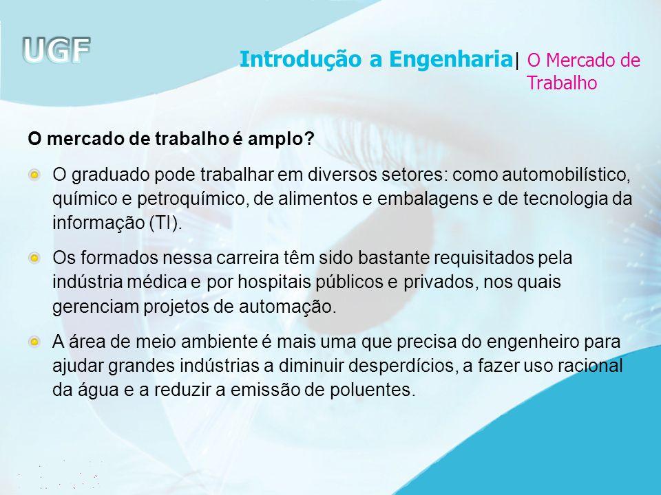 Introdução a Engenharia| O Mercado de
