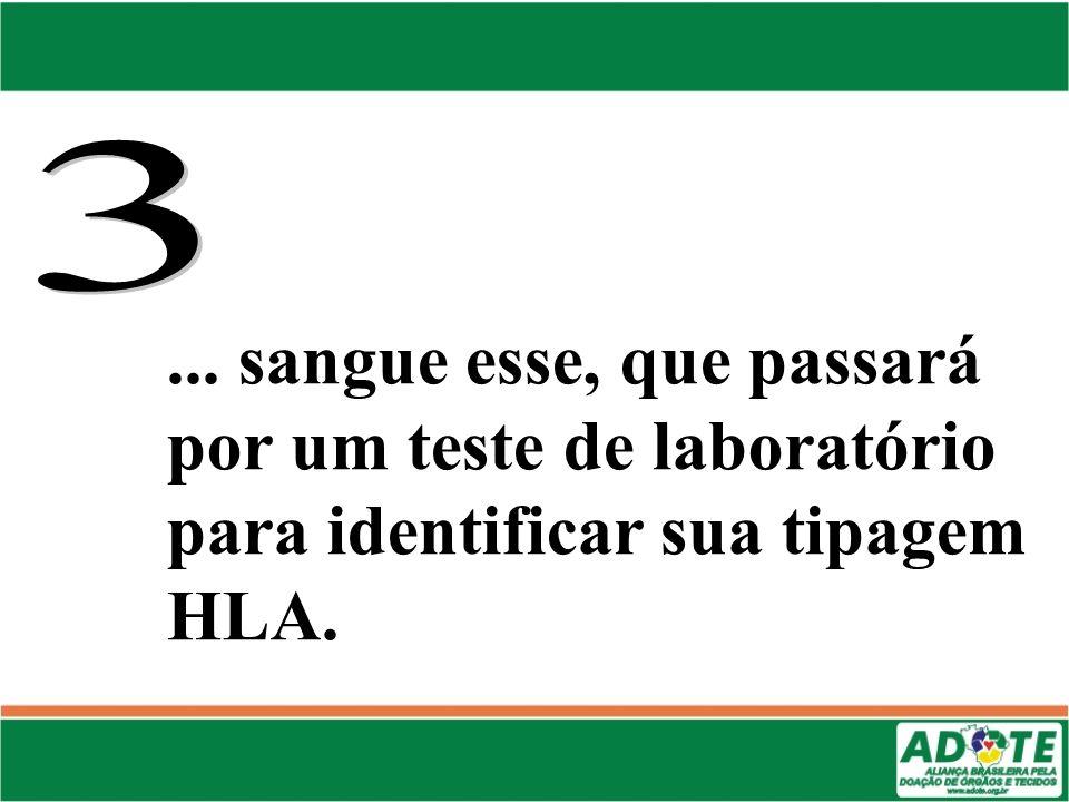 3 ... sangue esse, que passará por um teste de laboratório para identificar sua tipagem HLA.