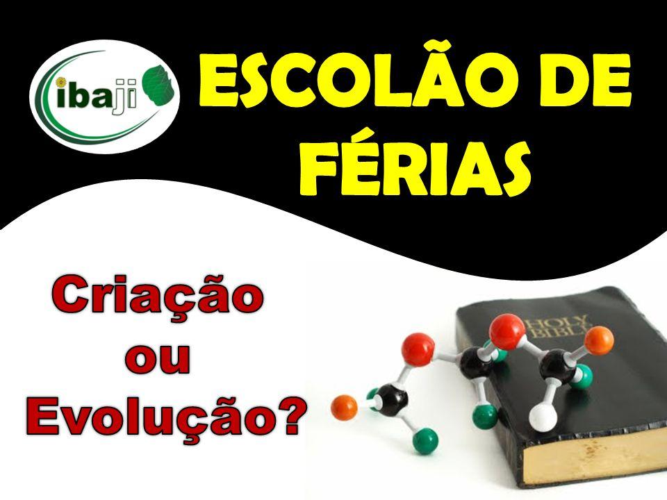 ESCOLÃO DE FÉRIAS Criação ou Evolução