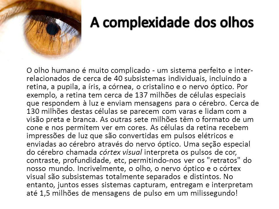 A complexidade dos olhos