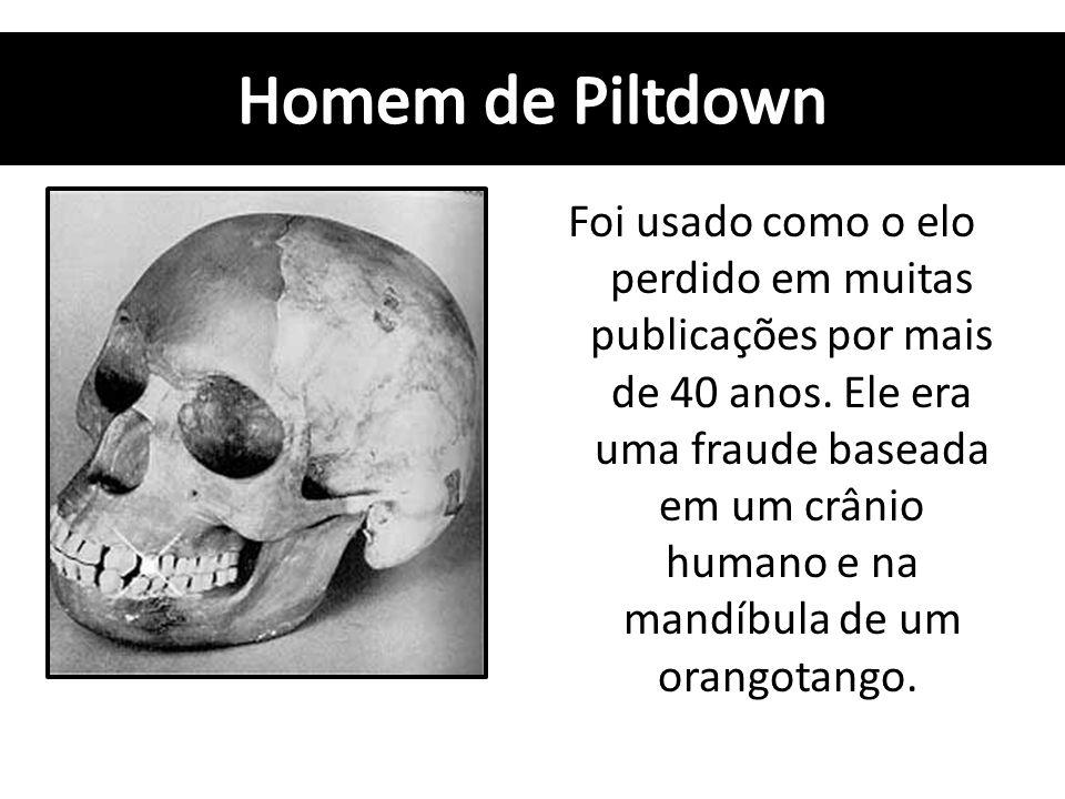 Homem de Piltdown