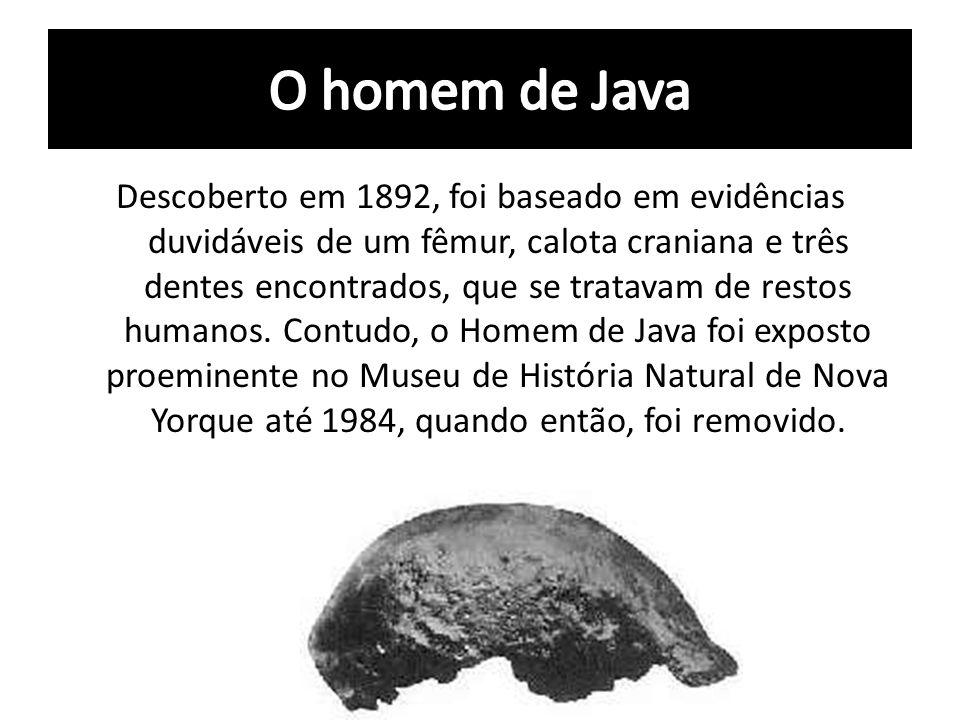 O homem de Java