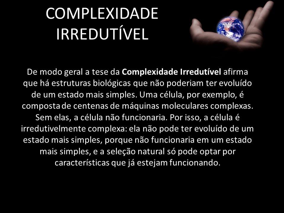 COMPLEXIDADE IRREDUTÍVEL