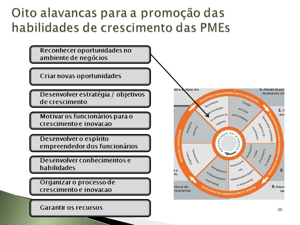 Oito alavancas para a promoção das habilidades de crescimento das PMEs