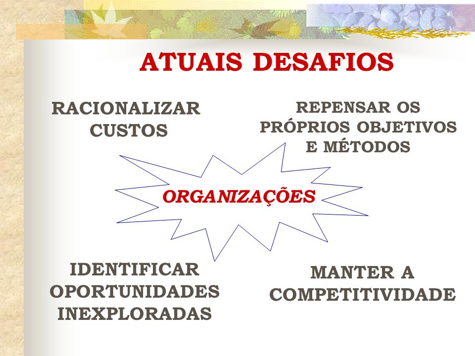 ATUAIS DESAFIOS RACIONALIZAR CUSTOS ORGANIZAÇÕES MANTER A IDENTIFICAR