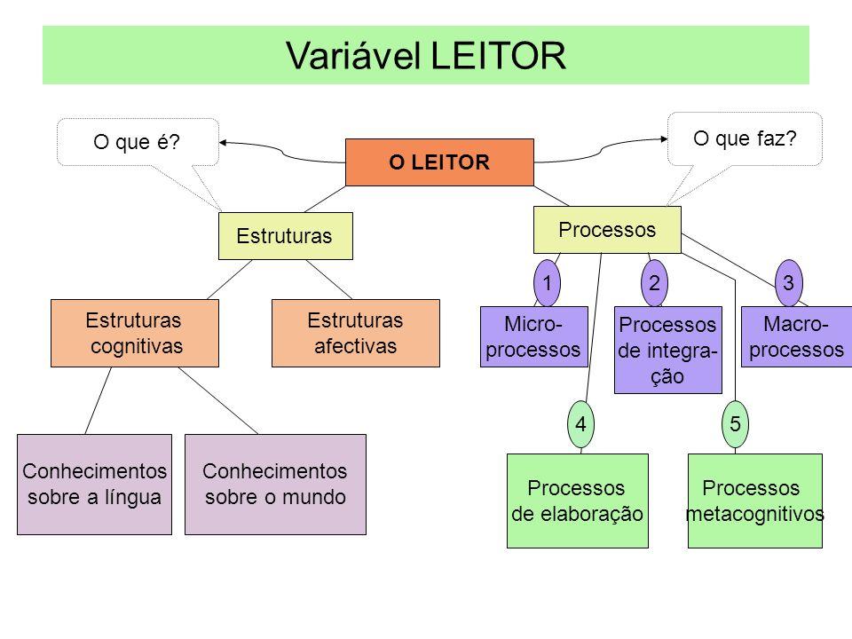 Variável LEITOR O que faz O que é O LEITOR Processos Estruturas 1 2