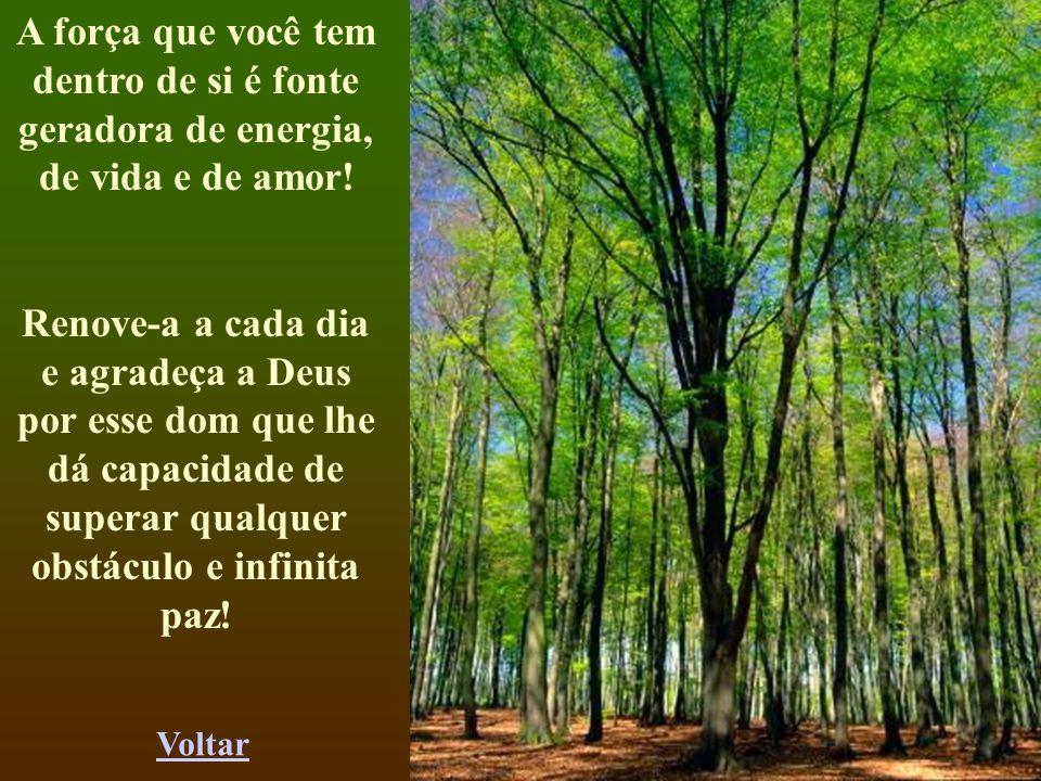 A força que você tem dentro de si é fonte geradora de energia, de vida e de amor!