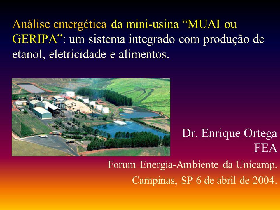 Análise emergética da mini-usina MUAI ou GERIPA : um sistema integrado com produção de etanol, eletricidade e alimentos.