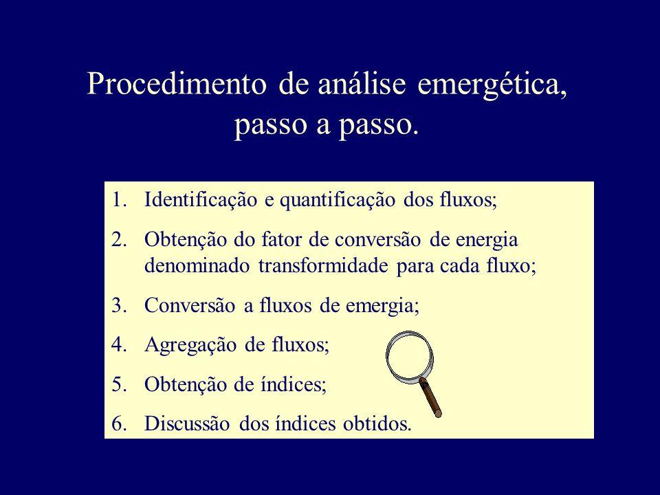 Procedimento de análise emergética, passo a passo.