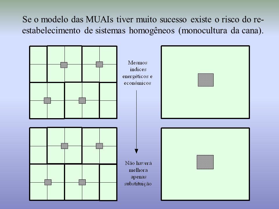 Se o modelo das MUAIs tiver muito sucesso existe o risco do re-estabelecimento de sistemas homogêneos (monocultura da cana).