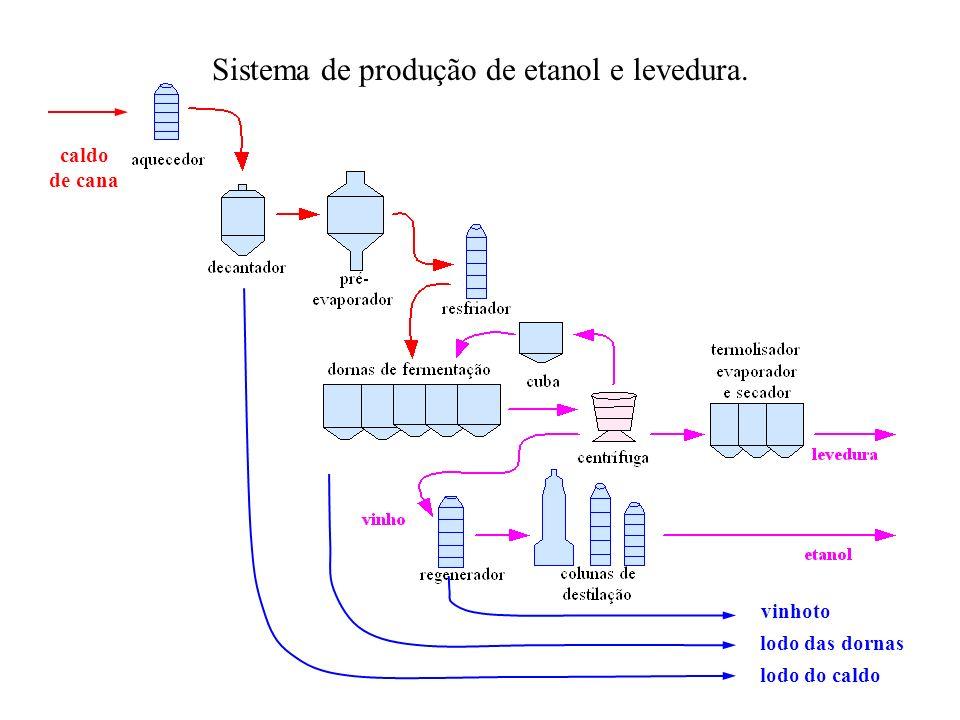 Sistema de produção de etanol e levedura.