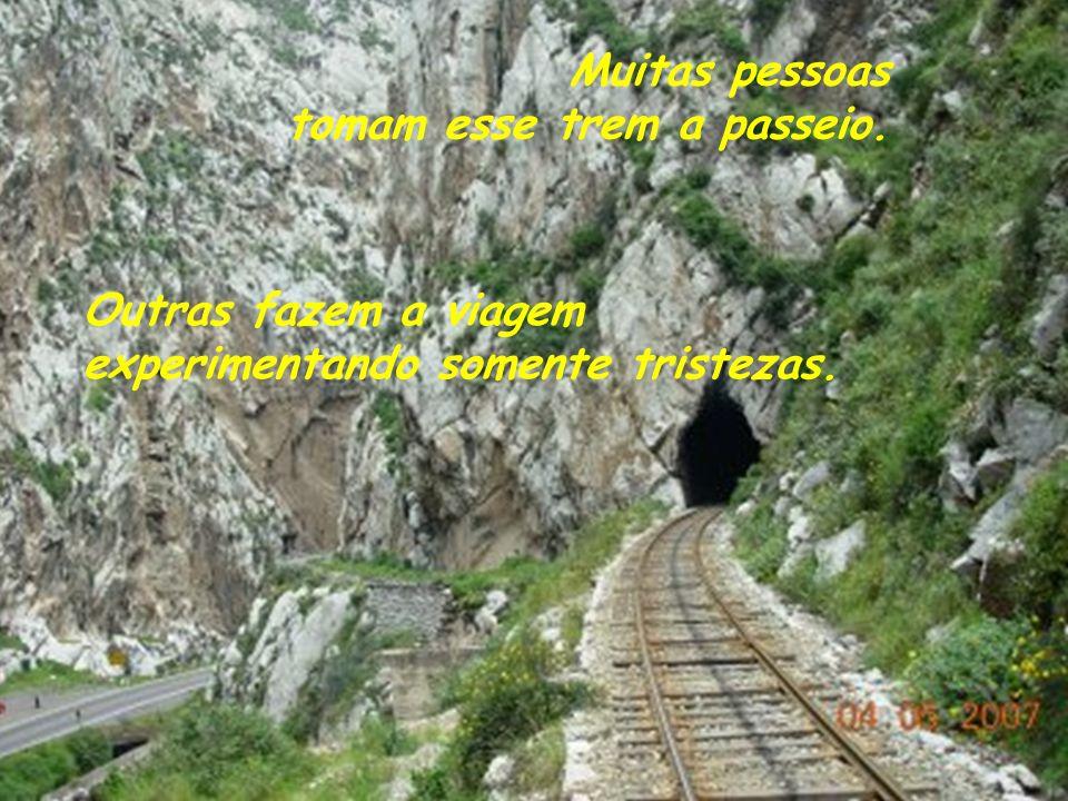 Muitas pessoas tomam esse trem a passeio.