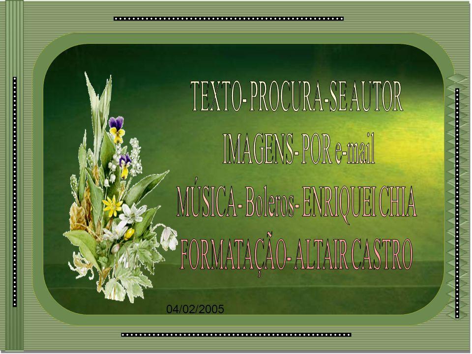 TEXTO- PROCURA-SE AUTOR IMAGENS- POR e-mail