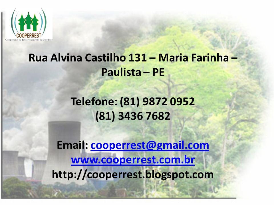 Rua Alvina Castilho 131 – Maria Farinha – Paulista – PE Telefone: (81) 9872 0952 (81) 3436 7682 Email: cooperrest@gmail.com www.cooperrest.com.br http://cooperrest.blogspot.com