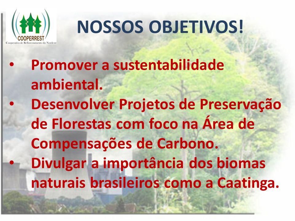 NOSSOS OBJETIVOS! Promover a sustentabilidade ambiental.