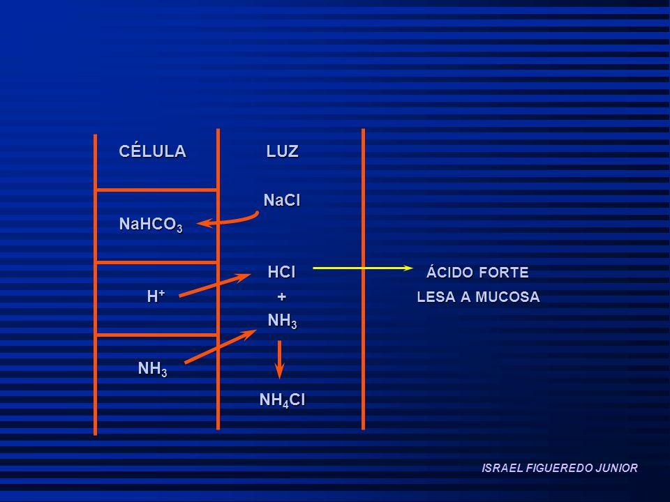 NH4Cl CÉLULA LUZ NaCl NaHCO3 HCl ÁCIDO FORTE H+ + LESA A MUCOSA NH3