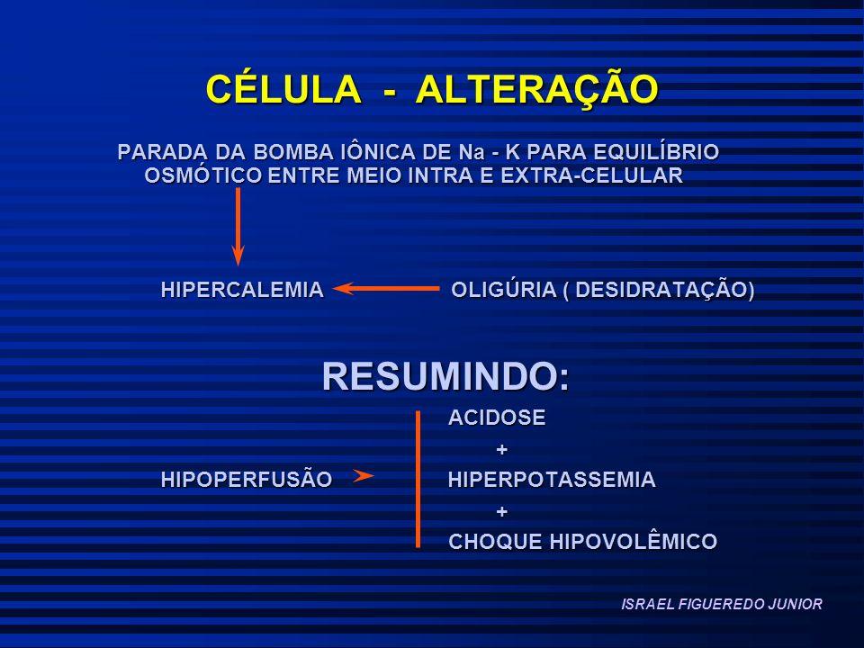 CÉLULA - ALTERAÇÃO RESUMINDO: