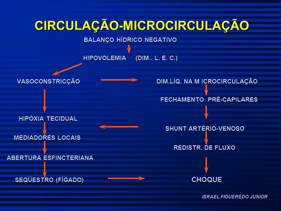 CIRCULAÇÃO-MICROCIRCULAÇÃO