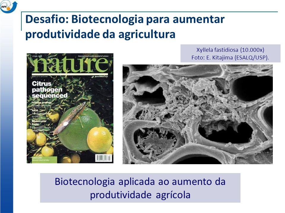 Desafio: Biotecnologia para aumentar produtividade da agricultura