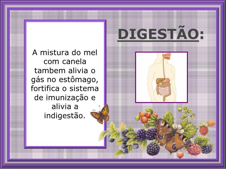 A mistura do mel com canela tambem alivia o gás no estômago, fortifica o sistema de imunização e alivia a indigestão.