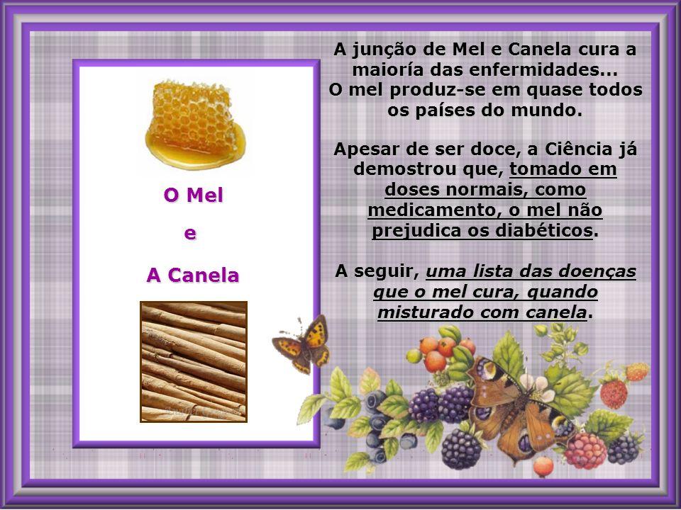 A junção de Mel e Canela cura a maioría das enfermidades