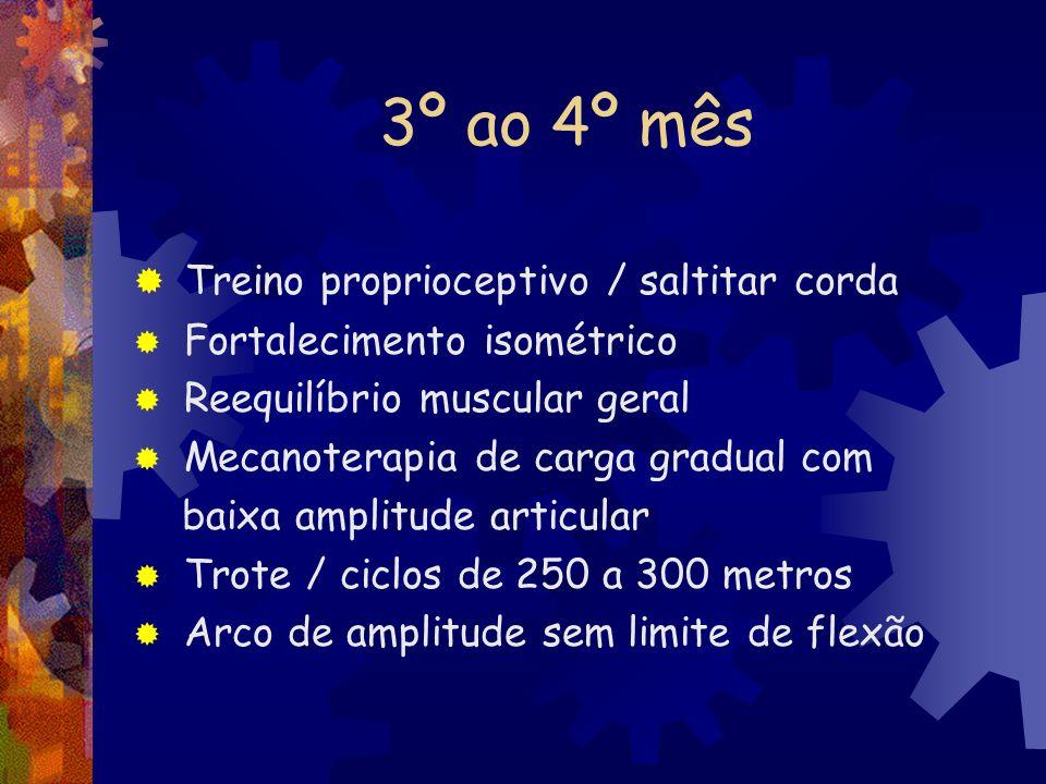 3º ao 4º mês Treino proprioceptivo / saltitar corda