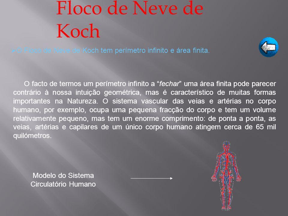 Floco de Neve de Koch O Floco de Neve de Koch tem perímetro infinito e área finita.