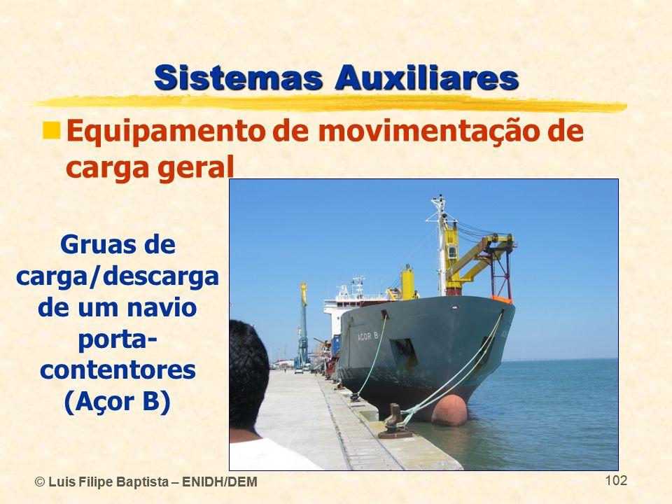 Gruas de carga/descarga de um navio porta-contentores (Açor B)