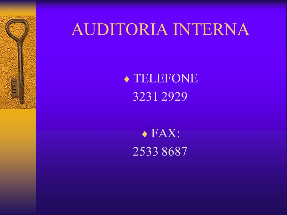 AUDITORIA INTERNA TELEFONE 3231 2929 FAX: 2533 8687