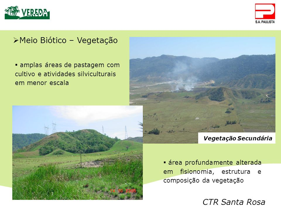 Meio Biótico – Vegetação