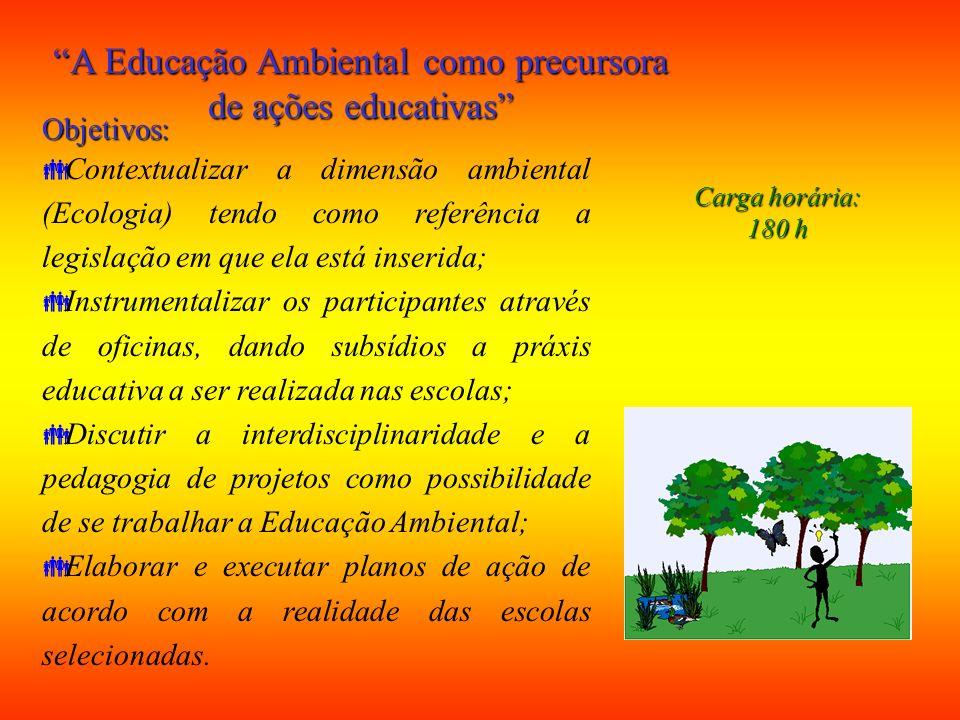 A Educação Ambiental como precursora de ações educativas