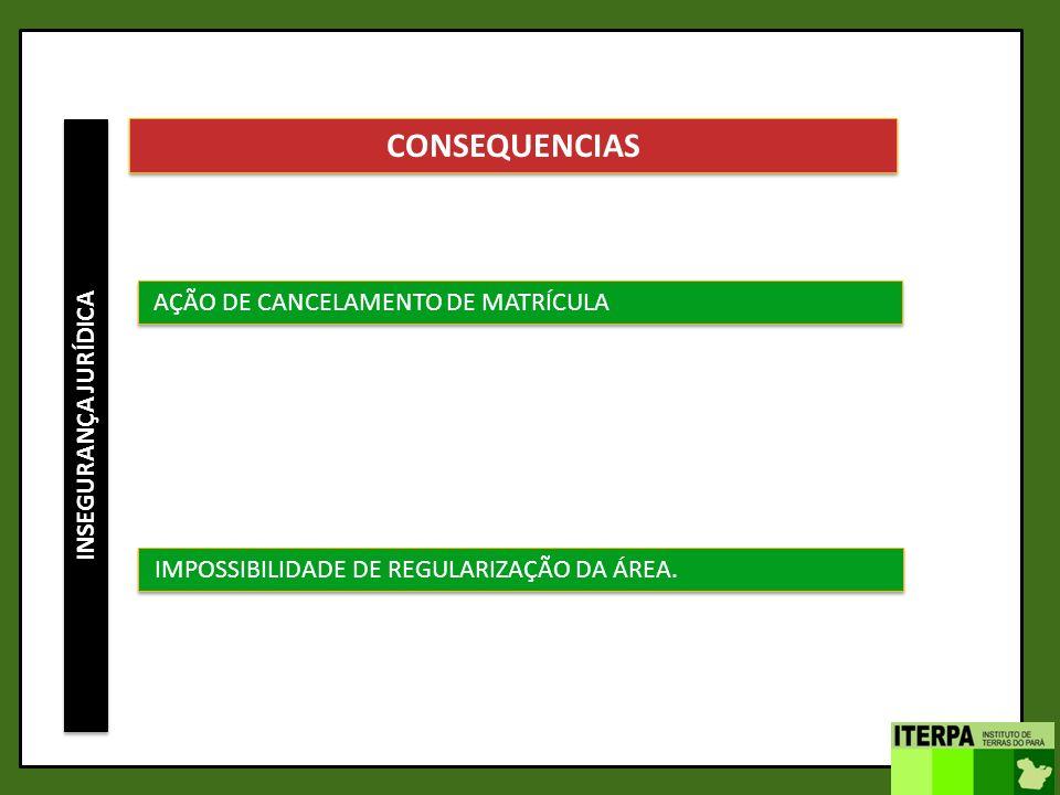 CONSEQUENCIAS AÇÃO DE CANCELAMENTO DE MATRÍCULA INSEGURANÇA JURÍDICA