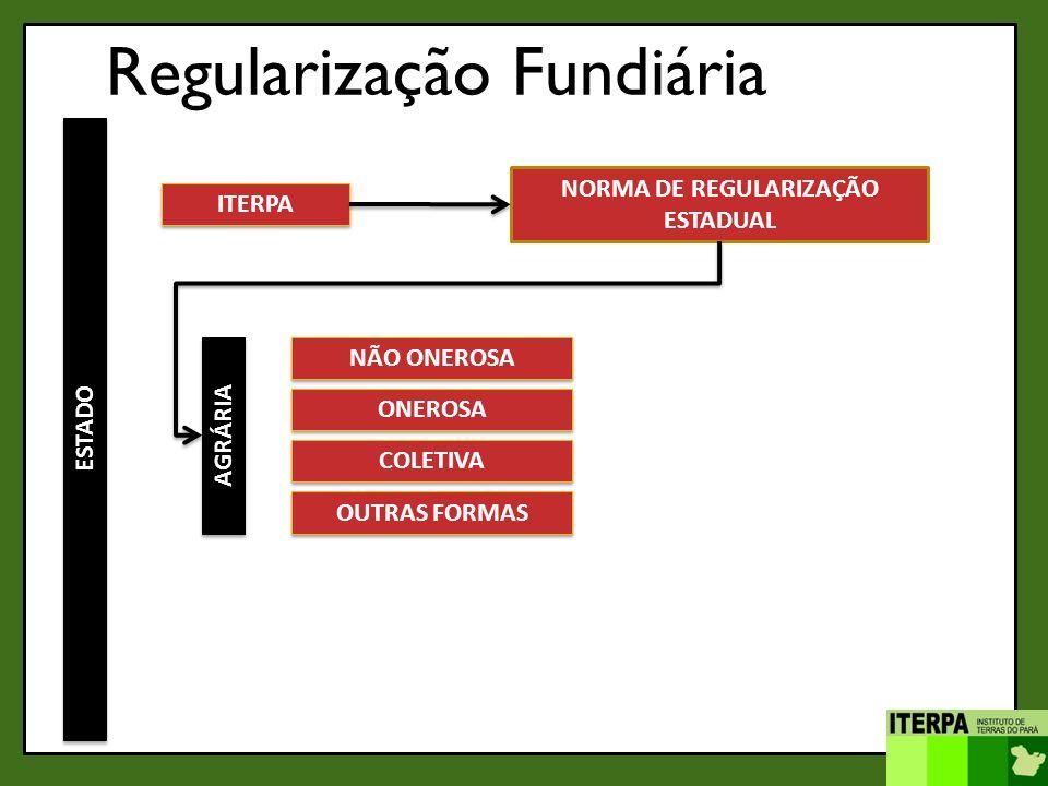 NORMA DE REGULARIZAÇÃO ESTADUAL