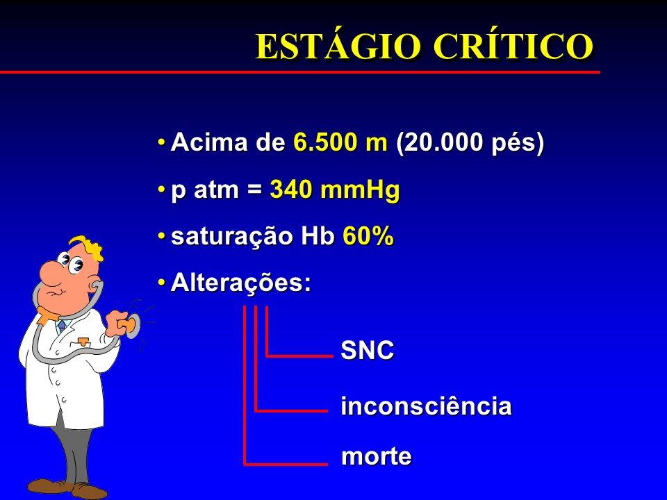 ESTÁGIO CRÍTICO Acima de 6.500 m (20.000 pés) p atm = 340 mmHg