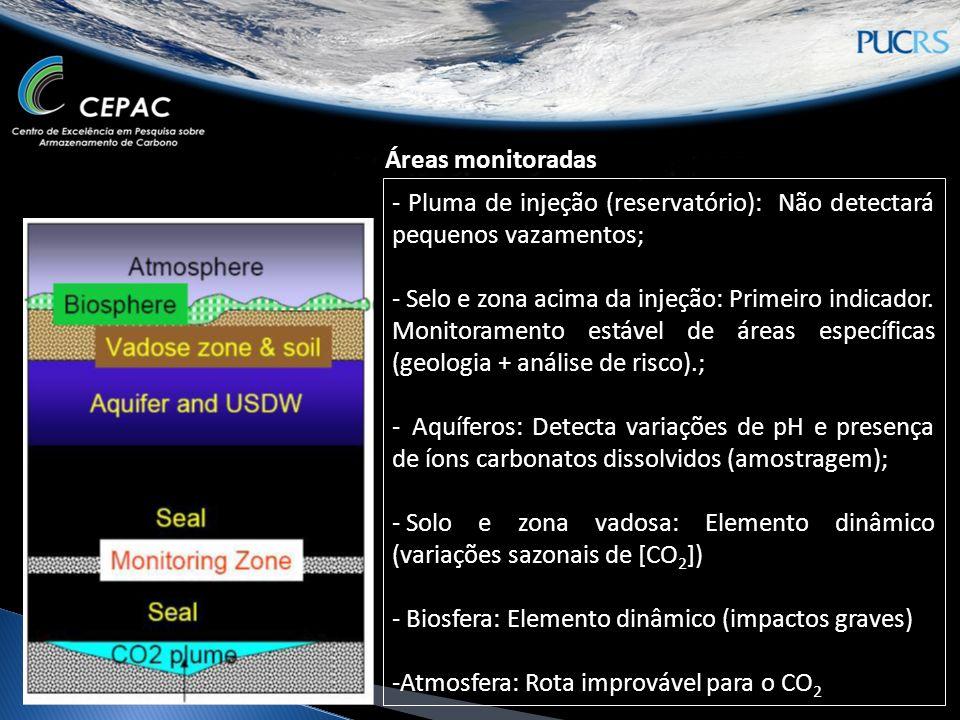 Áreas monitoradas - Pluma de injeção (reservatório): Não detectará pequenos vazamentos;
