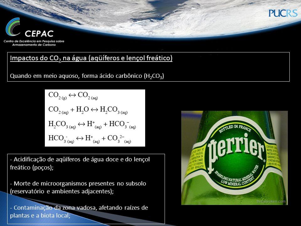 Impactos do CO2 na água (aqüíferos e lençol freático)